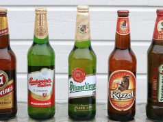 czech beer brands