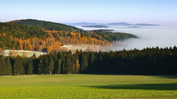 Sumava national park history